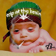 tripatthebrain.jpg